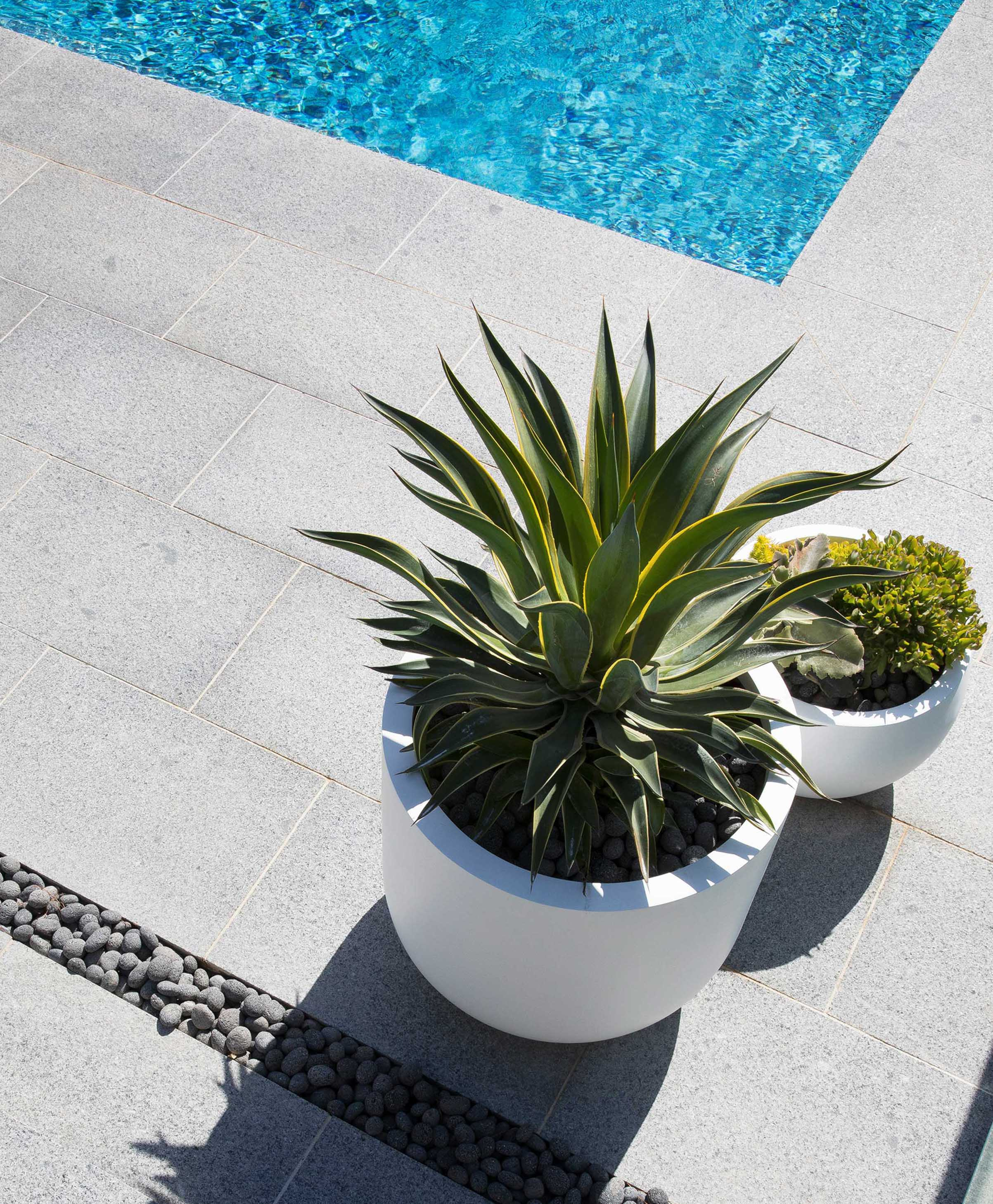 Blog In-article-images top-5-benefits-fibreglass-pots-and-planters-02