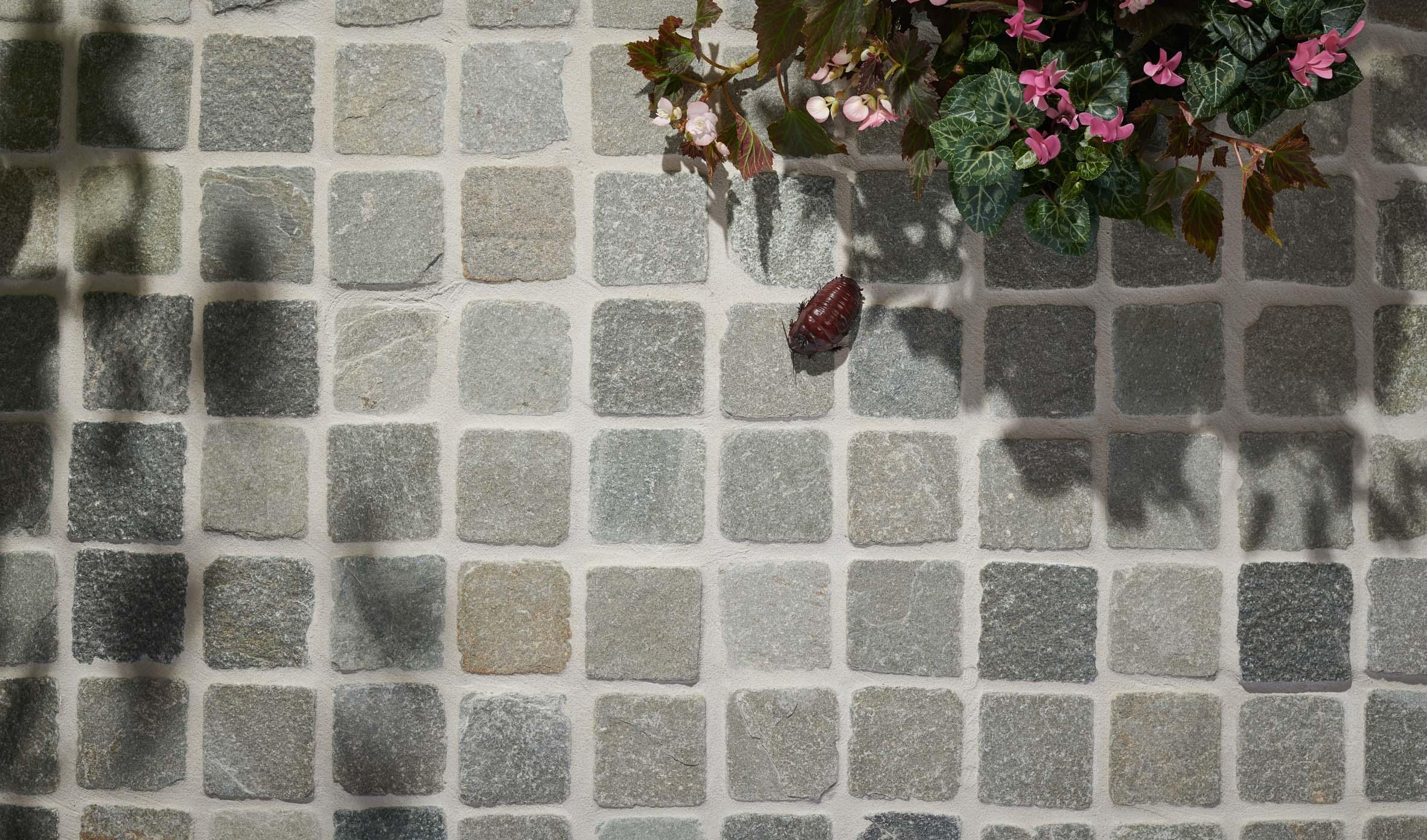 Cobblestones Thumbnails cobblestones-06
