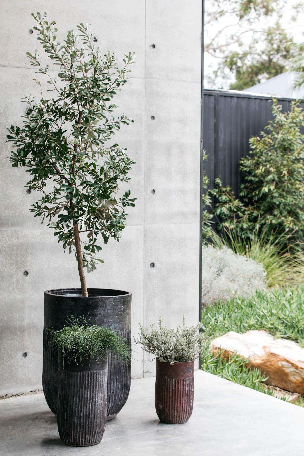 Decor Landare Gallery banksia-copper-01