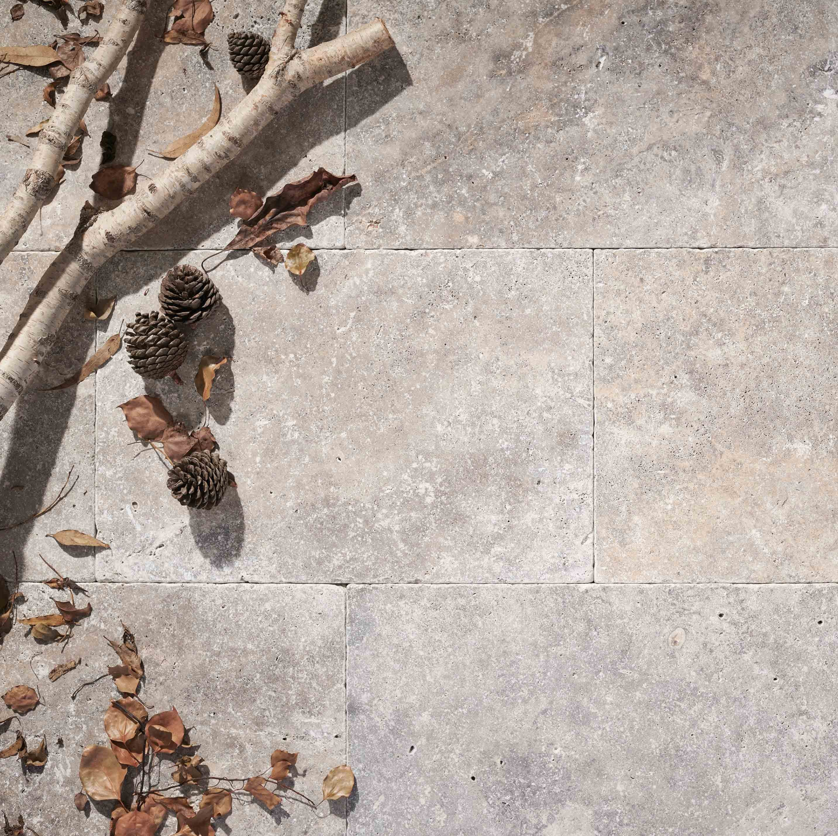 Stone-Pavers-and-Tiles-Outdoor Hero premium-silver
