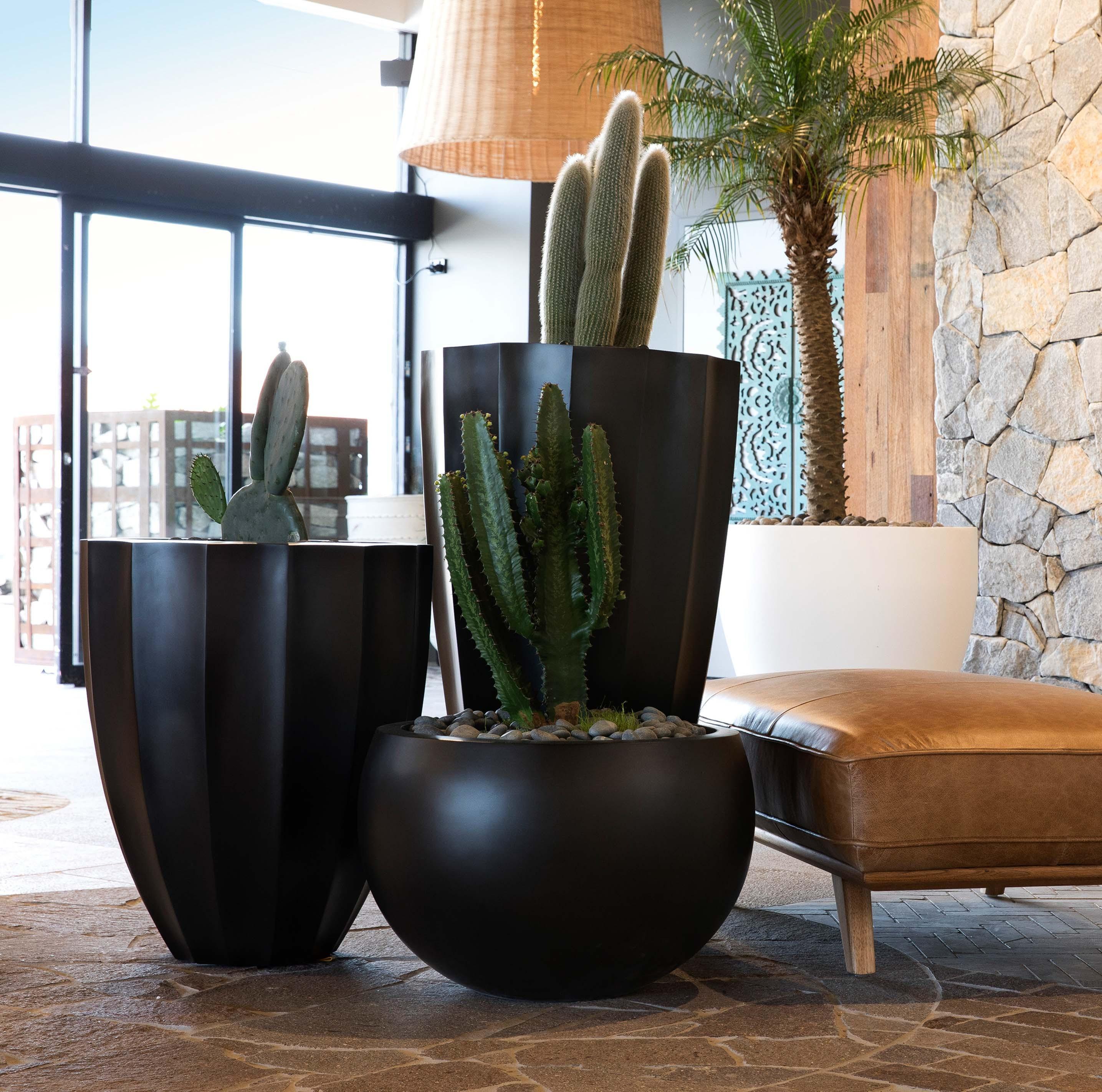 Blog hero-article-images top-5-benefits-fibreglass-pots-and-planters