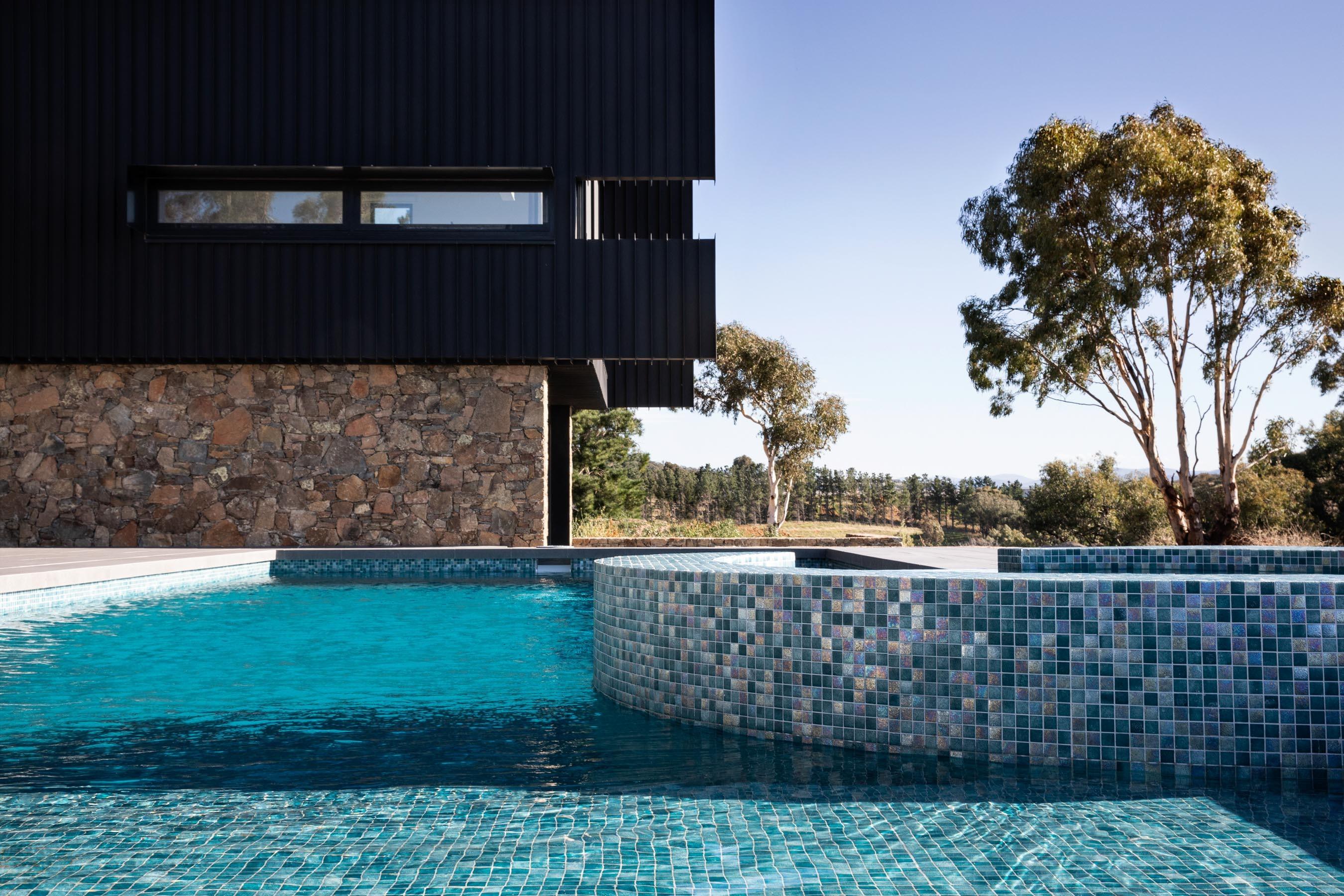 Pool-Tiles Gallery Australian lizard-02