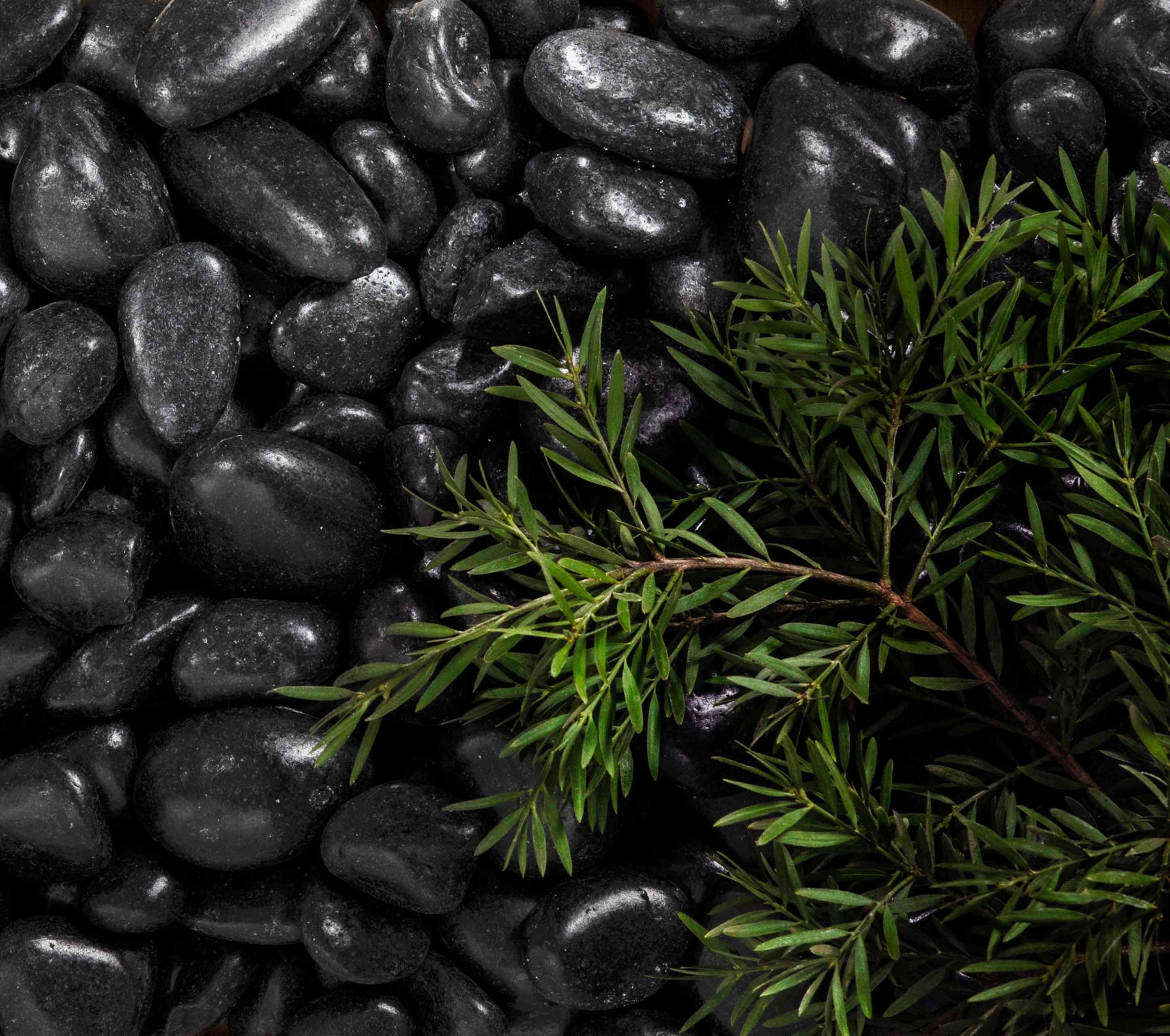 stone-pebbles Hero black-polished-stone-pebbles2