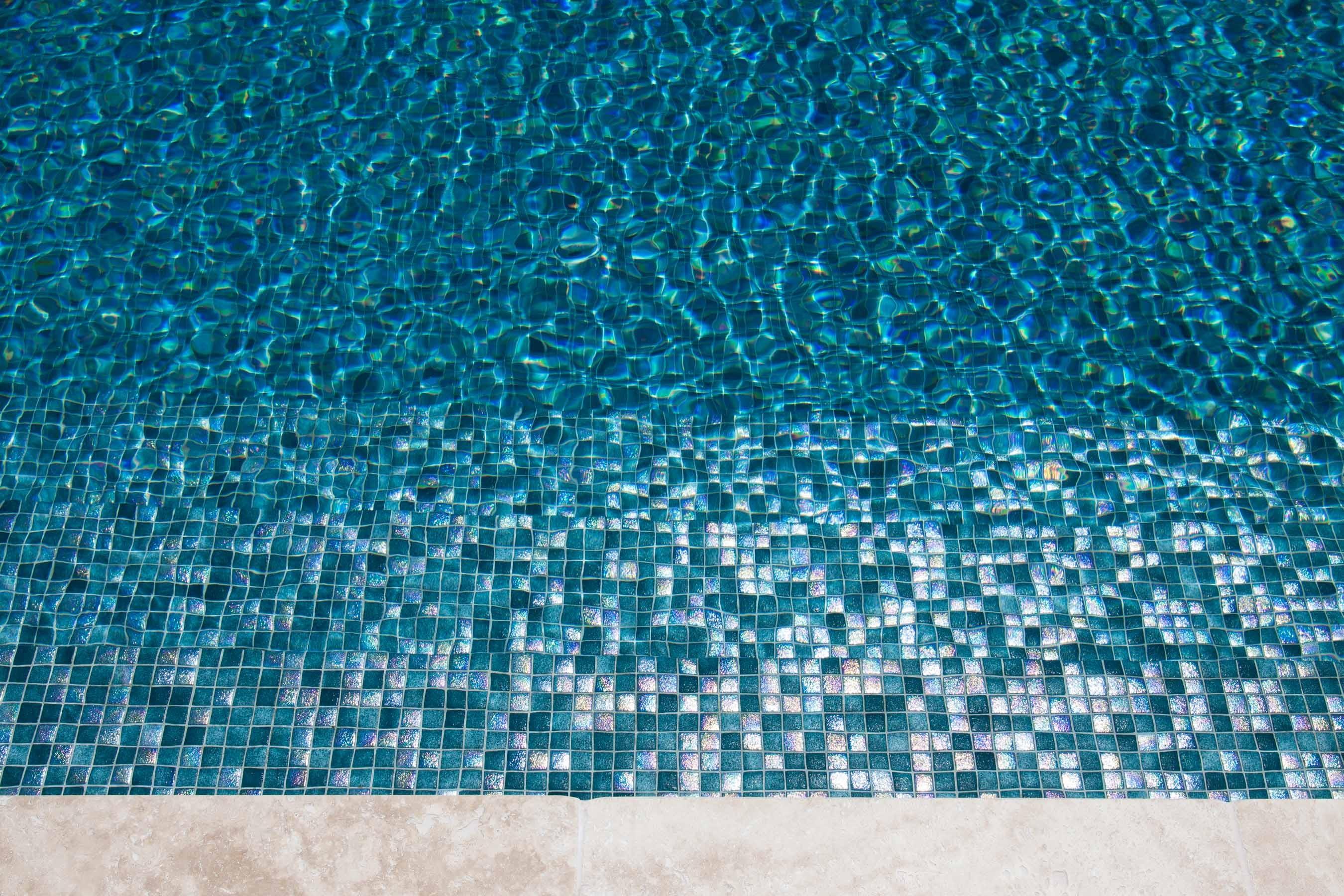 Pool-Tiles Gallery Australian lizard-01