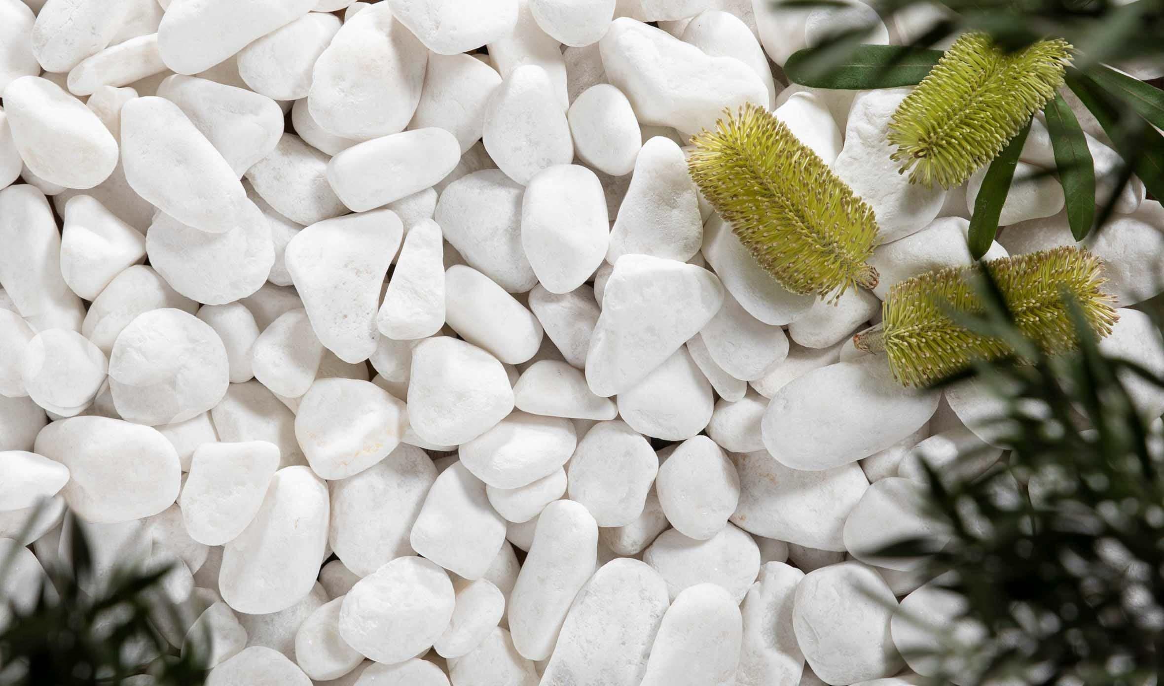 stone-pebbles Thumbnail stone-pebbles-15