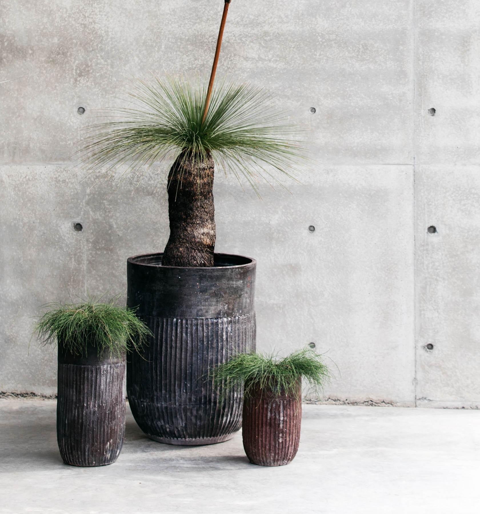 Decor Landare Gallery banksia-copper-03
